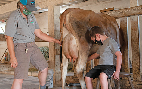 Hands-on Milking
