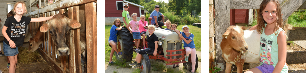 Farm Camps