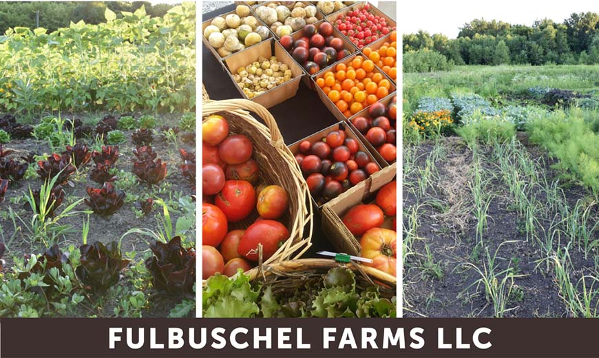 Produce Grown Using All Organic Practices